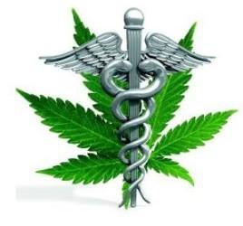 Security for Medical Marijuana Producers and Dispensaries